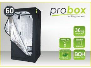 Probox 60